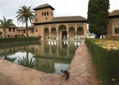 Visita Alhambra jardines sólo para ti