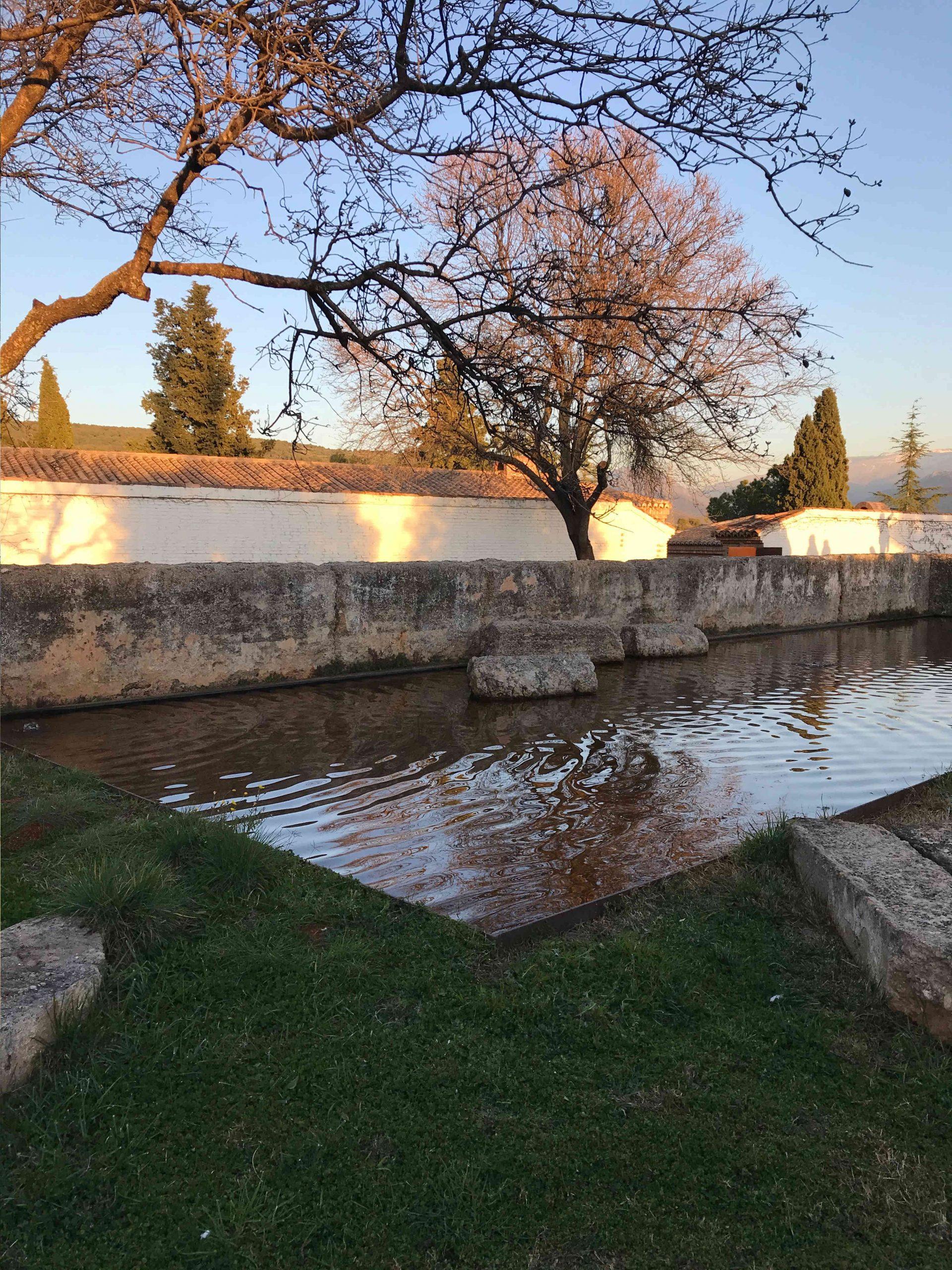 Alberca central con agua, rodeado de cesped y restos arqueológicos que es el palacio de los Alixares